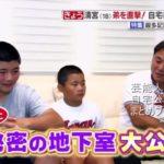 【野球選手の自宅】清宮幸太郎選手の自宅地下室の練習場【画像あり】