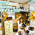 【女子中学生の部屋】岡部真子さんの黒猫大好きな部屋【レア画像】