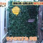 【元嫁は三船美佳】高橋ジョージさんの中庭はニューヨークな自宅【画像あり】