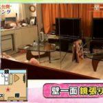 【壁一面鏡張り】橋本マナミさんの1R自宅【画像あり】