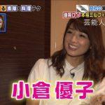 【離婚前】小倉優子さんの豪華自宅【画像】