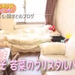 【イラっとさせるアイドル】山下若菜さんのビンボー自宅【画像あり】