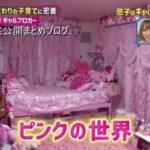 【超ピンク部屋】ちいめろさんと琉ちゃろくんの自宅【画像】