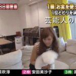 【表参道の近く】安田美沙子さんの自宅【画像あり】