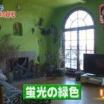 【蛍光緑の壁】野沢直子さんのサンフランシスコの自宅【画像あり】