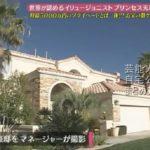 【ホワイトタイガーのいる】プリンセス天功さんのラスベガス豪邸自宅【画像あり】