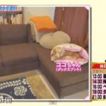【掃除大好き】ガッキーこと新垣結衣さんの自宅【画像あり】