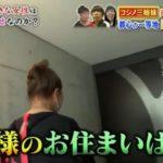 【愛犬用のプール】コシノヒロコさんの芦屋の大豪邸自宅【画像あり】