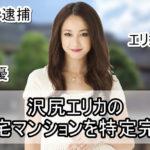 【家宅捜査】沢尻エリカさんの自宅マンションを特定完了【画像】