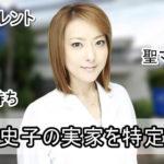 【女医タレント】西川史子先生の実家を特定完了【画像】