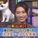 【猫19匹】青山めぐさんの実家自宅【画像】
