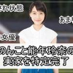 【あまちゃん】のんこと能年玲奈さんの兵庫の実家を特定完了【画像】