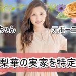 【元モー娘。】石川梨華さんの実家を特定完了【画像】