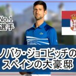 【世界No.1テニス選手】ノバク・ジョコビッチ選手のスペインの大豪邸自宅【画像】